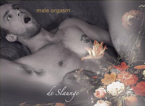 mannen orgasme